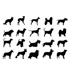 collection of dogs silhouette vector image vector image