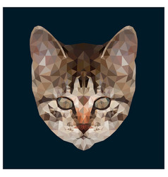 low poly kitten head vector image