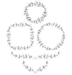 Olive leaf laurels and wreaths vector