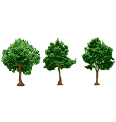 silhouettes of urban trees vector image vector image