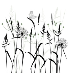 Traced elements - The meadow in summer time vector image vector image
