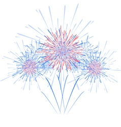 Holiday festival firework vector