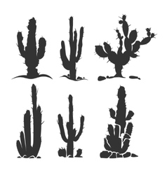 Desert cactus silhouette plants isolated on vector