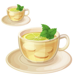 Herbal tea with ginger root and mint vector