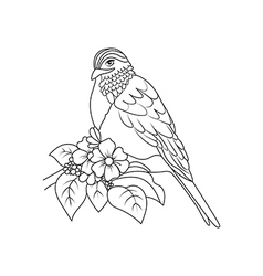 Sketch to bird sitting on branch vector