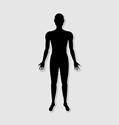 Human body paper style sticker vector