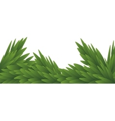 Green leaves nature design graphic vector