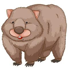 A wombat vector