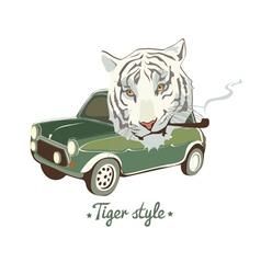 white smoking tiger vector image