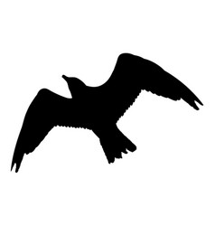 Seagull flying silhouette isolated on white vector