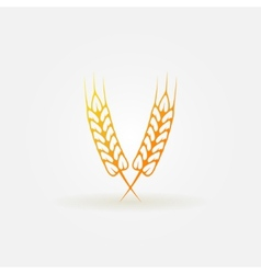 Ears of wheat bright logo or icon vector