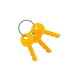 Door or padlock keys on key ring vector image vector image