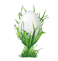 Easter egg and egg cup of grass vector