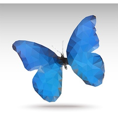 Bluebutterfly vector