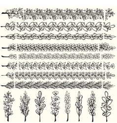 Hand drawn floral pattern borders vector