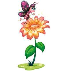 A butterfly above the giant flower vector image