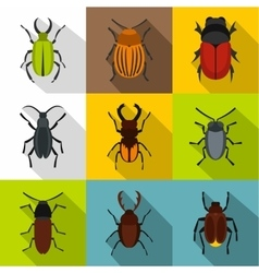 Order coleoptera icons set flat style vector