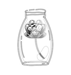 Contour flower inside jar with nature botany vector