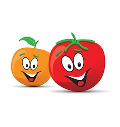 tomato orange vector image