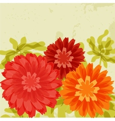 Red and orange chrysanthemums on grunge background vector image vector image