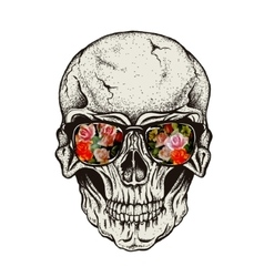 Skull of human with eyeglasses vector image