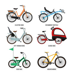 different type of bicycles for male female and vector image vector image