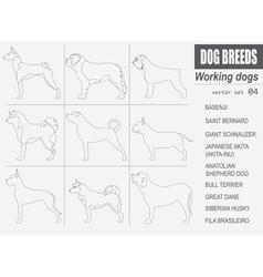 Dog breeds working watching dog set icon flat vector