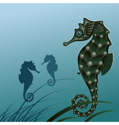 fish sea horse vector image vector image