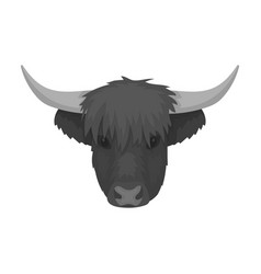 Highland cattle head icon in monochrome style vector