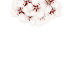 spring background with cherry blossom place for vector image vector image