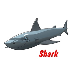 Dangerous cartoon shark character vector image