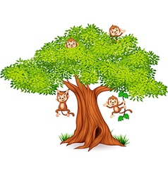 Happy little monkey hanging on tree vector
