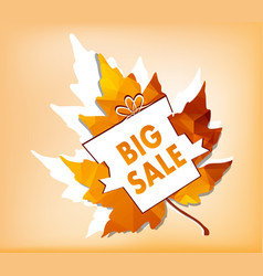 autumn new season of sales and discounts deals vector image vector image