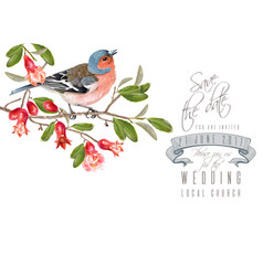 finch pomegranate branch card vector image
