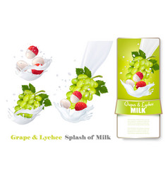 Grapes and lychee in milk splashes vector