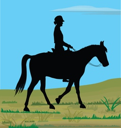 Horsewoman in nature vector
