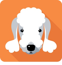 Dog bedlington terrier icon flat design vector