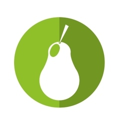 Harvest pear fruit nature green circle shadow vector