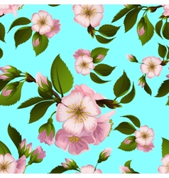 Seamless pattern with apple-tree flowers vector image vector image