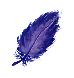 Watercolor lilac feather vector