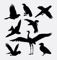Bird activity silhouette vector