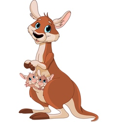 Kangaroo mom and babies vector
