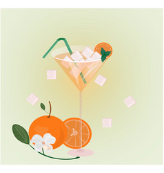 orange fruits fresh cocktail glass summer drink vector image