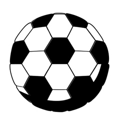 Isolated ball of soccer design vector