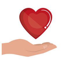 hand human with heart donation blood vector image
