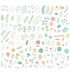 Floral hand drawn vintage set vector image