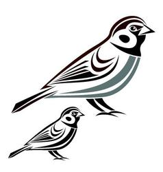 House sparrow vector image
