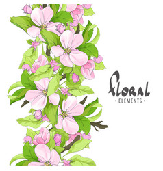Fragrant flowers of apple on a white background vector