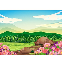 A beautiful scenery vector