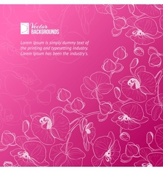 Orchid flower label vector image